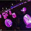 【湖口】元宵花燈