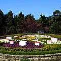 2014陽明山花季
