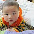 三月的寶寶照片