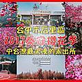泰安派出所櫻花季|台中市后里區