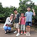 10〞08〞22 -- 去濟州島吃四天泡