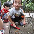 學校-普林斯頓幼稚園