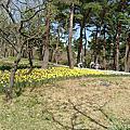 日立常陸海濱公園