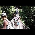 video-2013-08-05-11-49-05.mp4