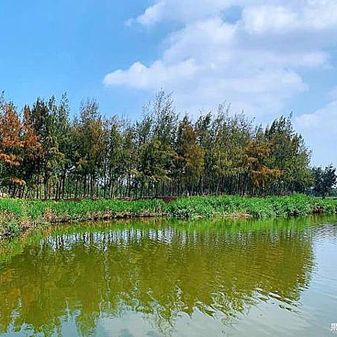 漫步或騎乘在有小日月潭美名的椬梧滯洪池畔,聆聽鳥兒歌唱,欣賞豐富生態景觀 享受舒服的芬多精與裝置藝術的美麗 親子寵物友善 毛孩不限大小最少牽繩即可)