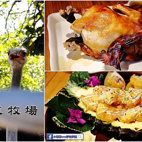 【食。花蓮】華東牧場〜動物園裡吃烤雞?!花蓮隱藏版的烤雞!沒預約至少要1小時….