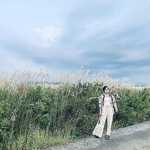 台南景點 x 季節限定 x 大內橋滿山遍野的芒草花隨風搖曳