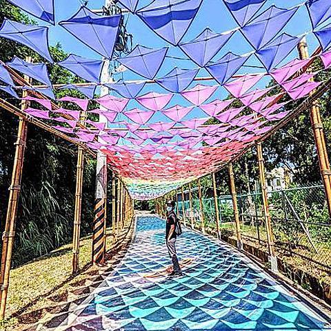 【桃園|觀音】2021桃園蓮花季開跑,彩虹風箏擎雨步道,賞花集點抽大獎~