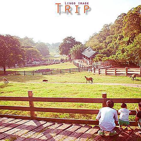 【Lingo親子寫真】Trip。台灣旅遊記錄-愛咬媽媽大腿肉的一歲8個月調皮小男孩和年輕爸媽的台灣幸福之旅 ( 家庭寫真 /台灣旅遊攝影 /飛牛牧場 ) 台灣自由行